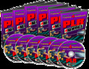 Thumbnail PLR for Newbies Video Series - Make More Money as an Affilia